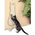 Kraapimisalus Kass