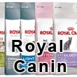 Royal Canin kassitoit